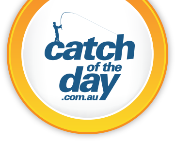 Catch Of The Day Promo Codes December 2018